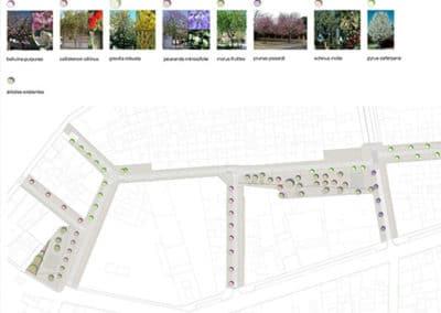 Reurbanización Barrio Xenillet. Vegetación zona de actuación.
