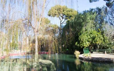Analisis de un jardin. Parc de Trénor