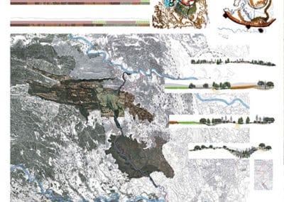 Reforestación en La Junquera. Análisis.